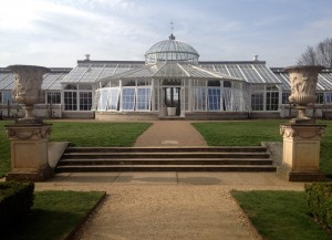 The camellia conservatory