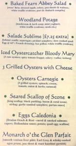 Oystercatcher 07