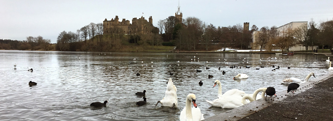 View across Linlithgow loch to the Palace